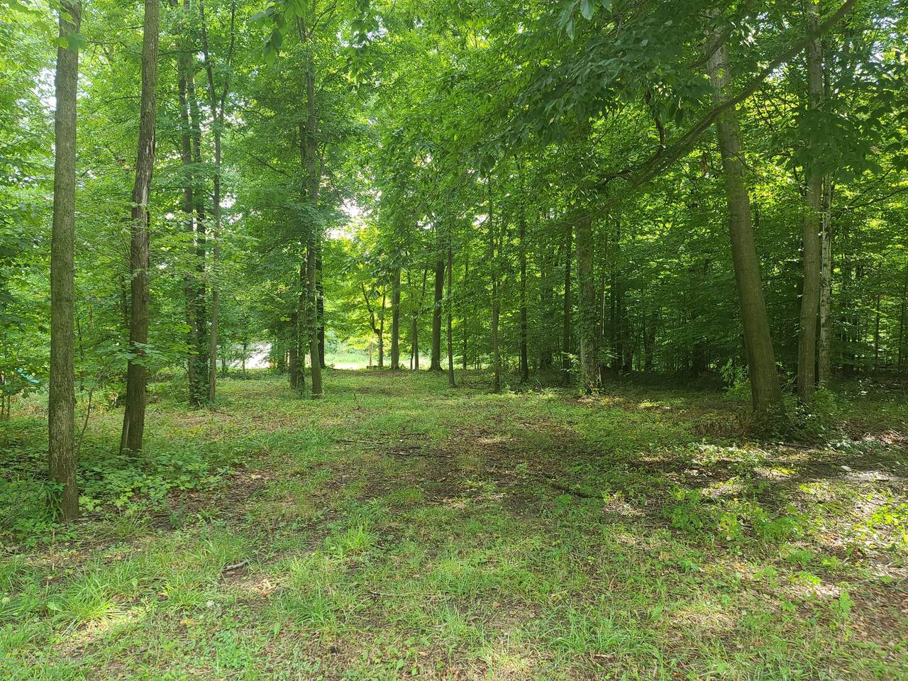 Lot 325 Campers Trail - Photo 1