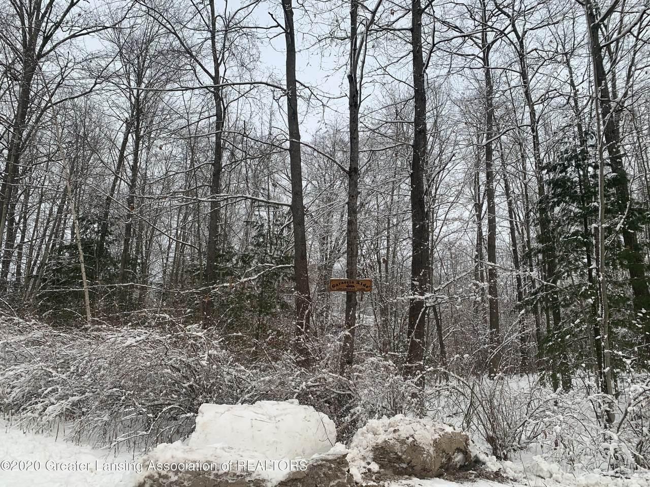 V/L Cold Creek Boulevard - Photo 1