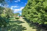 12362 Morrice Road - Photo 42
