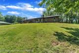 4125 Delta River Drive - Photo 4