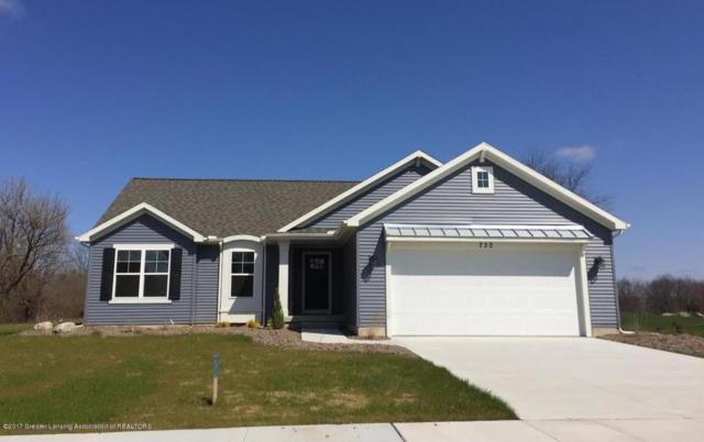 730 Skyview Trail, Ionia, MI 48846 (MLS #214791) :: Real Home Pros