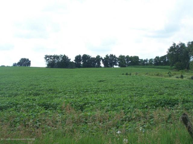 0 Plains Highway, Eaton Rapids, MI 48827 (MLS #220836) :: PreviewProperties.com