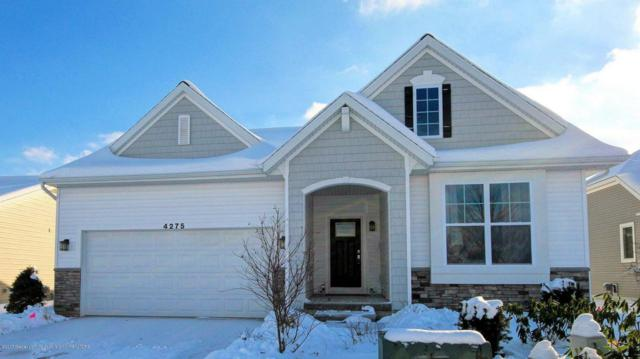 12885 Serenity Place, Dewitt, MI 48820 (MLS #221719) :: Buffington Real Estate Group