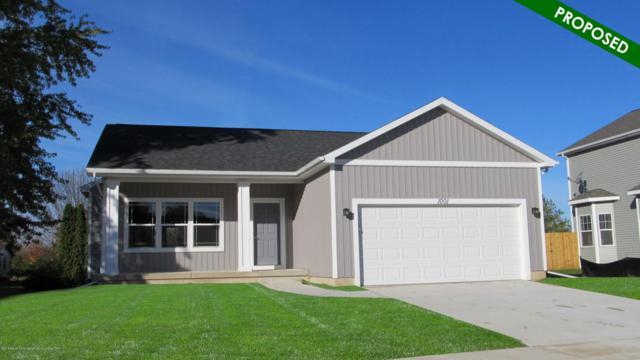 6705 Thunder Lane, Grand Ledge, MI 48837 (MLS #223142) :: Real Home Pros