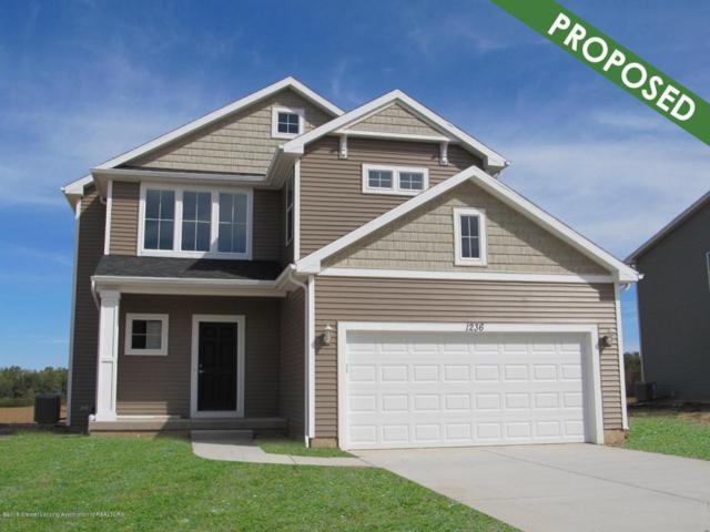 6685 Thunder Lane, Grand Ledge, MI 48837 (MLS #223148) :: Real Home Pros