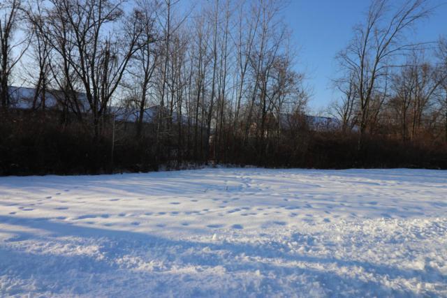 4337 Ringneck Lane, Holt, MI 48842 (MLS #223942) :: Real Home Pros