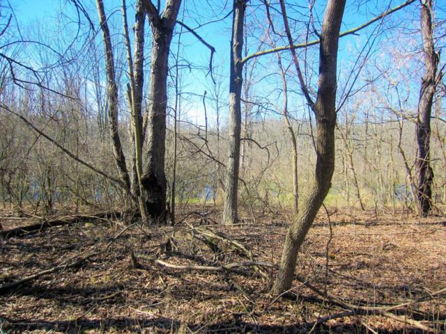 0 Winding Acres Lane, Eaton Rapids, MI 48827 (MLS #224215) :: PreviewProperties.com