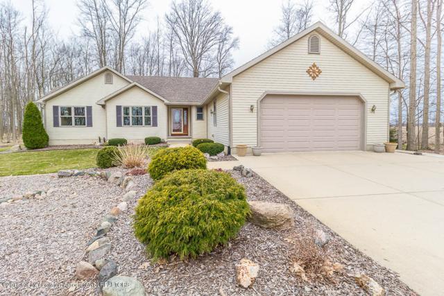 8221 W Price, St. Johns, MI 48879 (MLS #225281) :: Real Home Pros