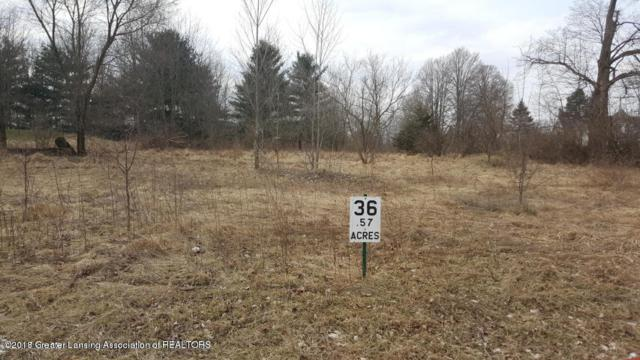 Lot #36 Highland Court, Dimondale, MI 48821 (MLS #225355) :: Real Home Pros