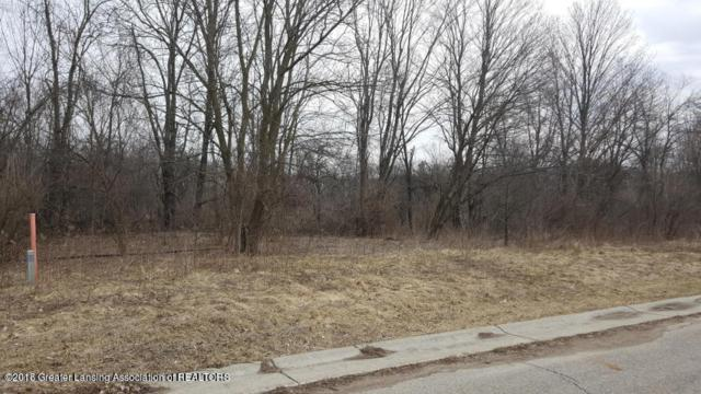 Lot #14 Highland Court, Dimondale, MI 48821 (MLS #225370) :: Real Home Pros