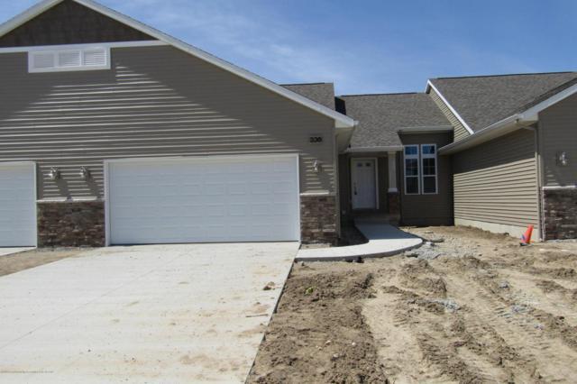 336 Barrington Circle, Lansing, MI 48917 (MLS #225397) :: Real Home Pros