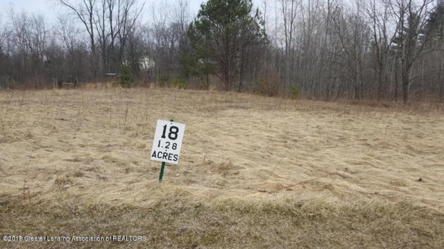 Lot #18 Highland Court, Dimondale, MI 48821 (MLS #225414) :: Real Home Pros