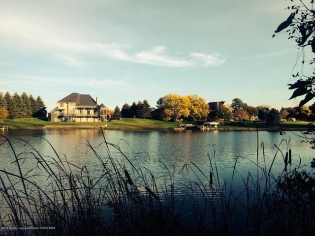 Lot 14 Oak Island Drive, Shaftsburg, MI 48882 (MLS #225481) :: Real Home Pros