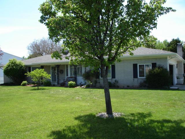 4908 Applewood Dr Drive, Lansing, MI 48917 (MLS #225603) :: Real Home Pros
