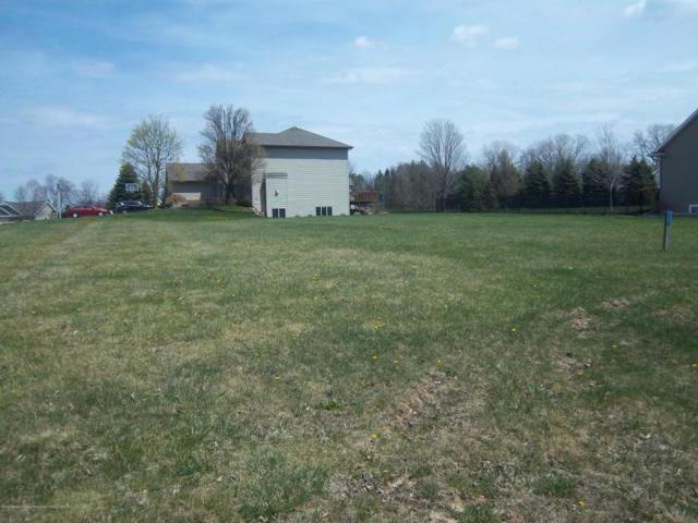 905 Woodbury Drive, Grand Ledge, MI 48837 (MLS #225656) :: Real Home Pros