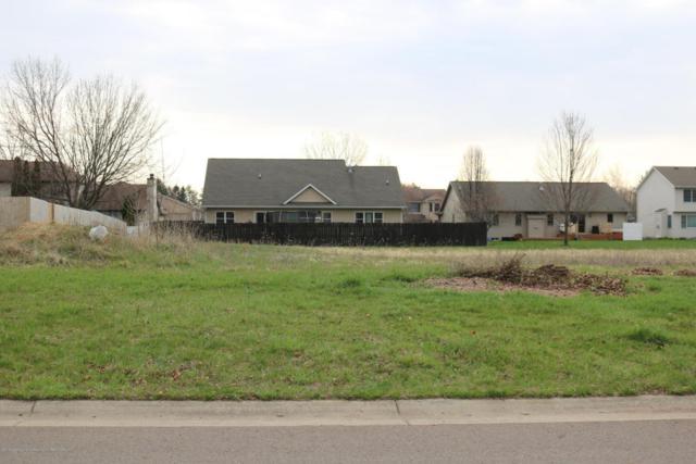 V.L Sunnydale, Lansing, MI 48917 (MLS #225717) :: Real Home Pros