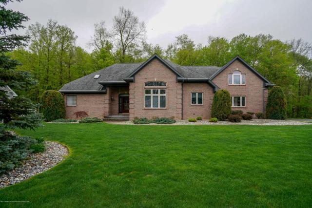 4054 Tall Oaks Drive, Grand Ledge, MI 48837 (MLS #226796) :: Real Home Pros