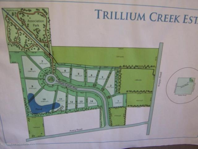 2872 Trillium Creek Way, St. Johns, MI 48879 (MLS #227125) :: Real Home Pros