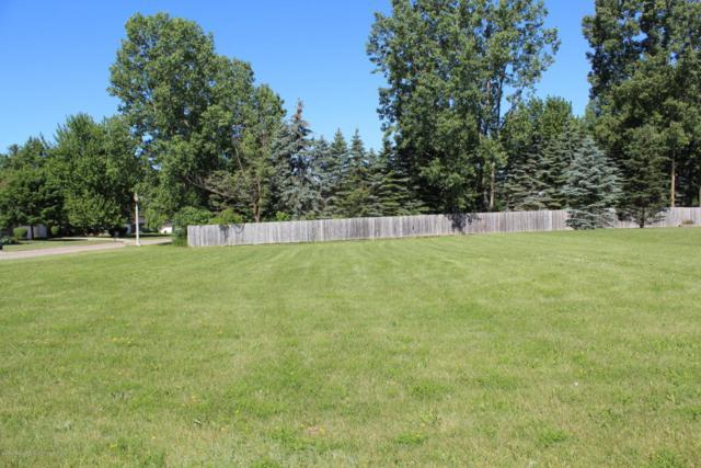 Lot 7 Laurelwood Drive, Lansing, MI 48917 (MLS #227229) :: Real Home Pros
