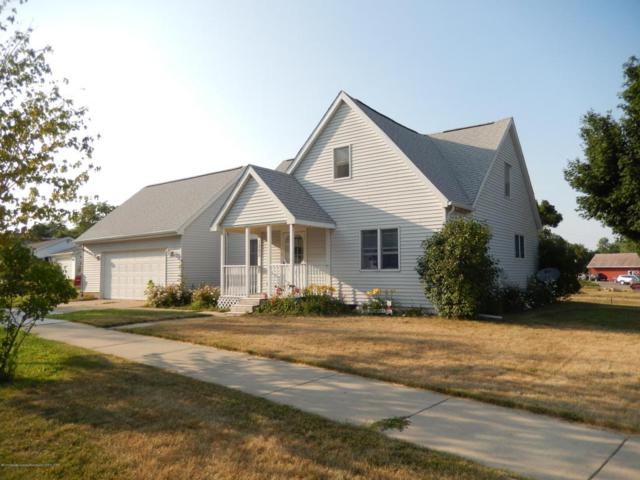 1205 James Street, Portland, MI 48875 (MLS #228243) :: Real Home Pros