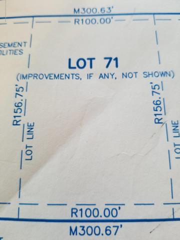 Vl Karen Lee Drive, Lansing, MI 48917 (MLS #230157) :: Real Home Pros