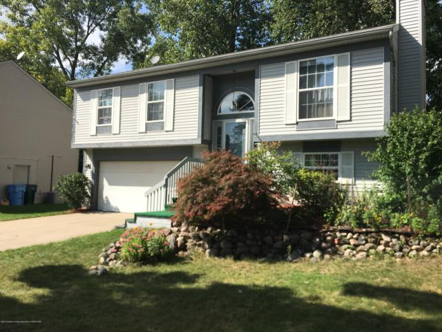 211 Olympia Drive, Lansing, MI 48911 (MLS #230546) :: Real Home Pros