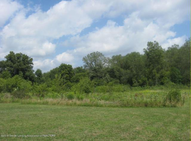 0 Old Pond Trail (Parcel A), Dimondale, MI 48821 (MLS #230620) :: Real Home Pros