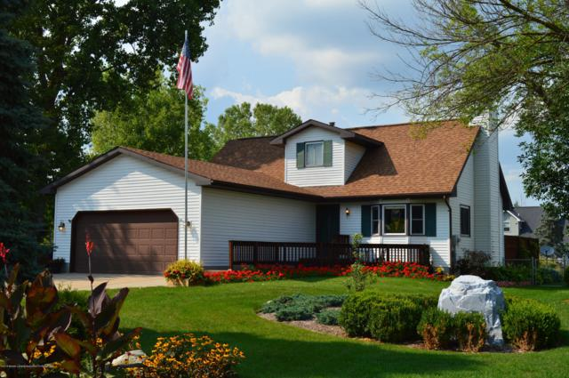 4624 Glenberry Drive, Holt, MI 48842 (MLS #230907) :: Real Home Pros