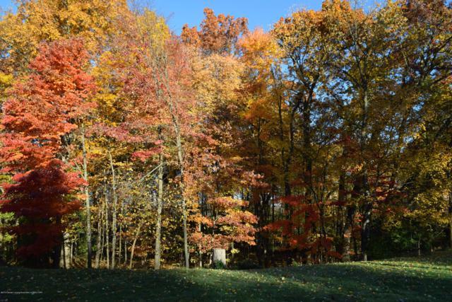 6445 Pine Hollow Drive, East Lansing, MI 48823 (MLS #231061) :: Real Home Pros