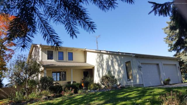 9137 N Hartel Road, Grand Ledge, MI 48837 (MLS #231424) :: Real Home Pros