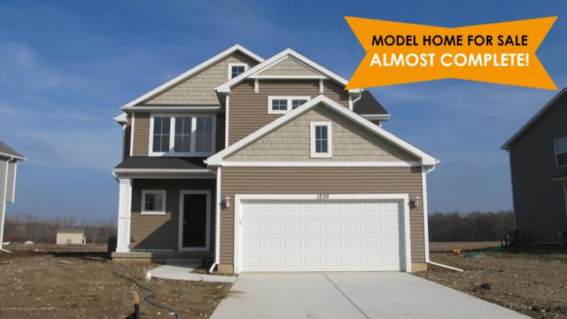 2550 Winterberry Street, Holt, MI 48842 (MLS #232018) :: Real Home Pros