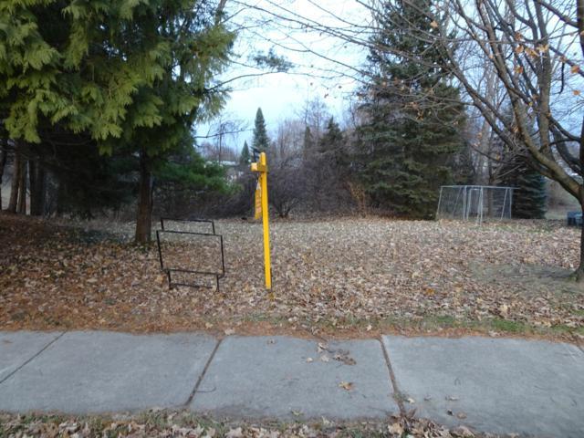 0 Lochinver Circle, Lansing, MI 48911 (MLS #232733) :: Real Home Pros