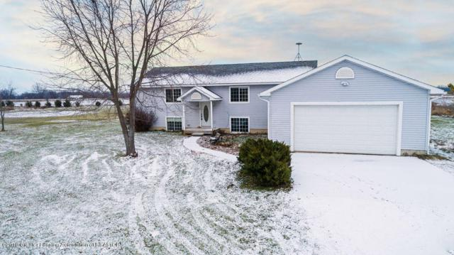 3481 S Williams Road, St. Johns, MI 48879 (MLS #233011) :: Real Home Pros