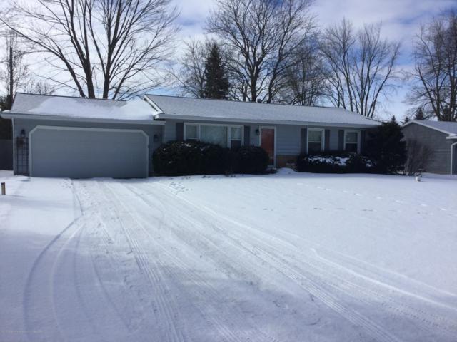 8515 S Huckleberry Lane, Lansing, MI 48917 (MLS #234356) :: Real Home Pros