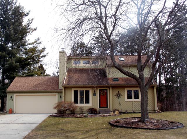 712 Lehigh Drive, Dewitt, MI 48820 (MLS #234709) :: Real Home Pros