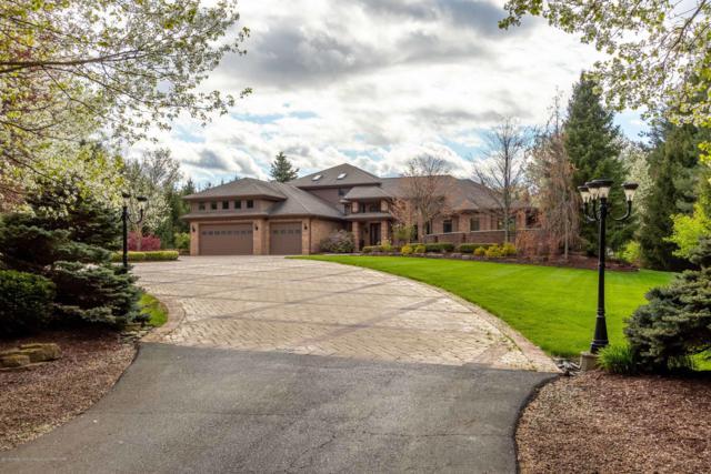1227 E Dexter Trail, Dansville, MI 48819 (MLS #236899) :: Real Home Pros