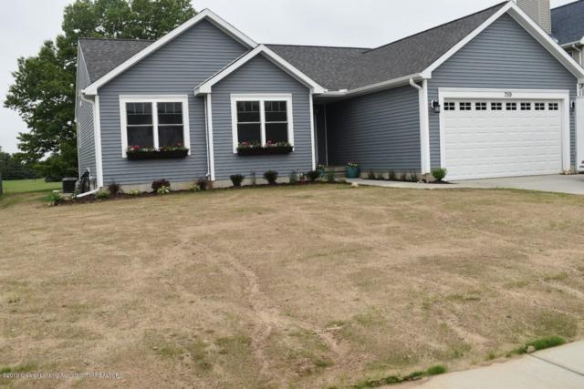 759 Tillies Avenue, Portland, MI 48875 (MLS #237309) :: Real Home Pros