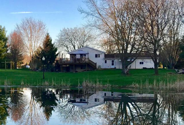 8185 Mast Trail, Springport, MI 49284 (MLS #237723) :: Real Home Pros