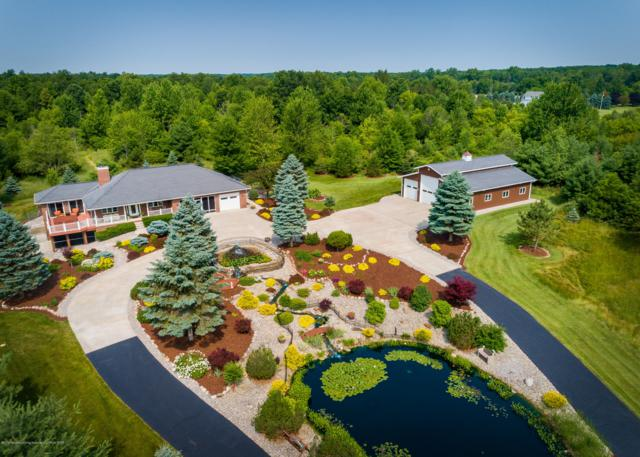6500 S Hollister Rd, Laingsburg, MI 48848 (MLS #238600) :: Real Home Pros
