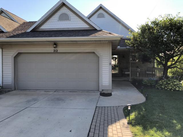 712 Pine Meadow Lane, Williamston, MI 48895 (MLS #238757) :: Real Home Pros