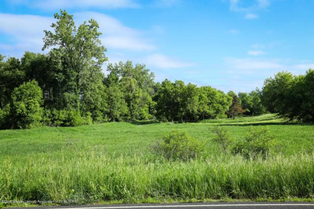 0 E Alward Road, Laingsburg, MI 48848 (MLS #238815) :: Real Home Pros