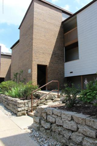 1445 E Pond Drive #35, Okemos, MI 48864 (MLS #238948) :: Real Home Pros