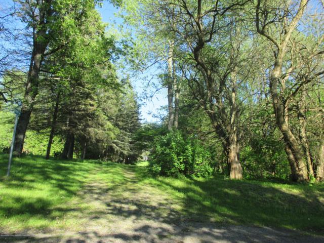2405 Gale Road, Eaton Rapids, MI 48827 (MLS #239854) :: Real Home Pros