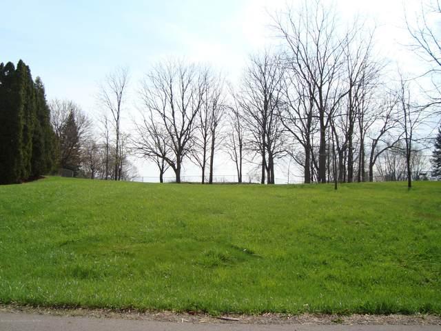 0 Skyline Drive, East Lansing, MI 48823 (MLS #245321) :: Real Home Pros