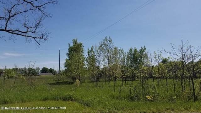 0 E Spicerville Highway, Eaton Rapids, MI 48827 (MLS #245914) :: Real Home Pros