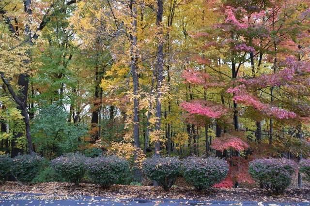 6445 Pine Hollow Drive, East Lansing, MI 48823 (MLS #245977) :: Real Home Pros