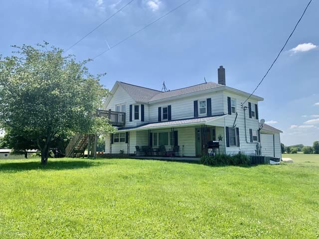 9084 S Alger Road, Perrinton, MI 48871 (MLS #247017) :: Real Home Pros