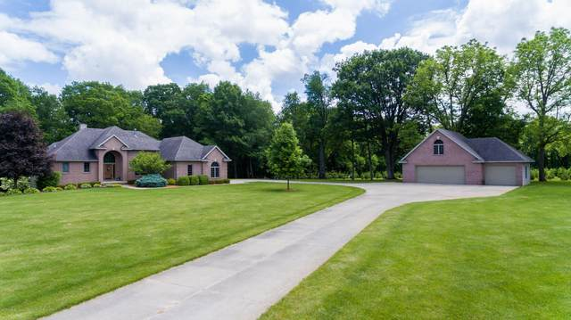 8446 Carriage Lane, Portland, MI 48875 (MLS #248236) :: Real Home Pros