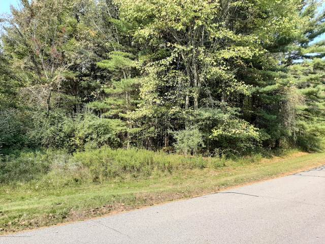 0 V/L Blue Water Way, Perry, MI 48872 (MLS #250546) :: Real Home Pros