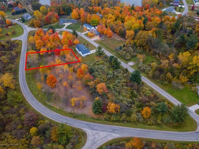 59-61 Lakeside Drive, Perrinton, MI 48871 (MLS #250693) :: Real Home Pros
